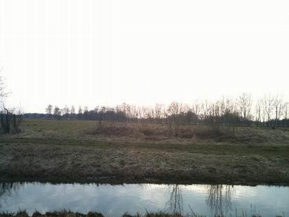 Ostfriesland in der Abendsonne (Foto: Oliver Gerken)