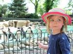 Lucy mit Pinguinen