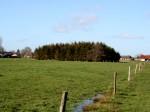 Gemeinde Moormerland - Ortschaft Jheringsfehn - Weideland 2