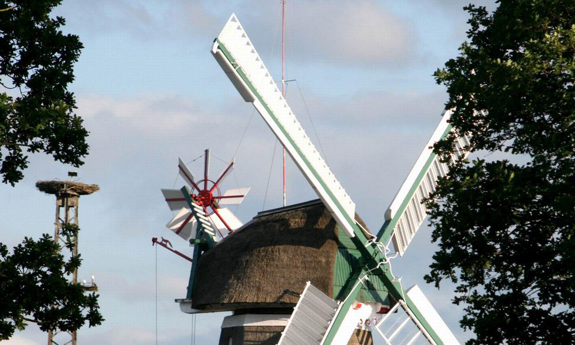 24punkt - Ostfriesland lesen!