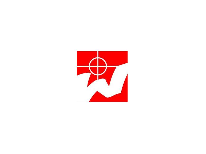 Logocontest Misterwong